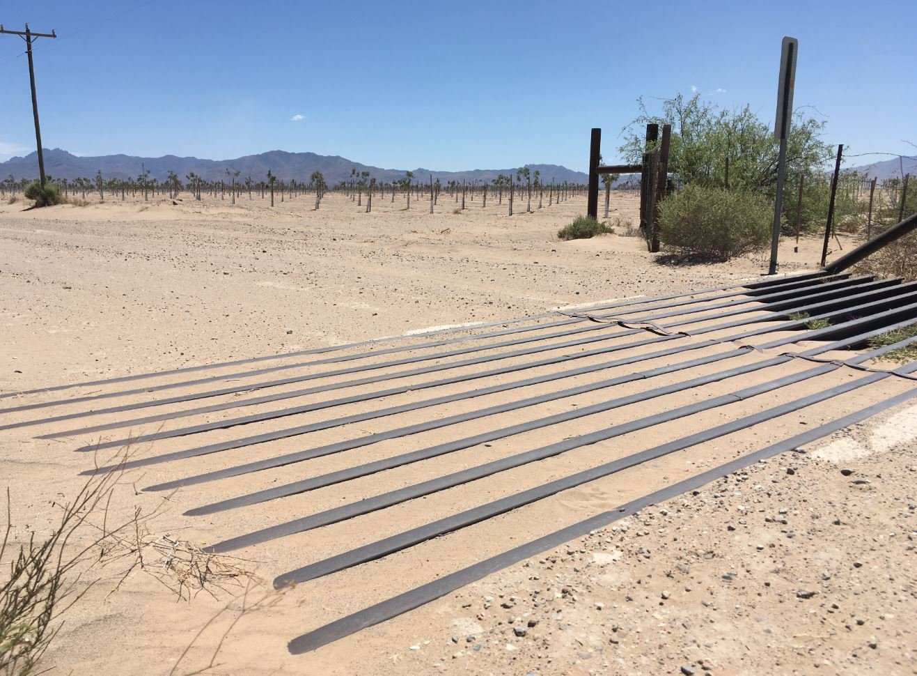 Dust problems may continue in southeastern Arizona. (Source: KPHO/KTVK)