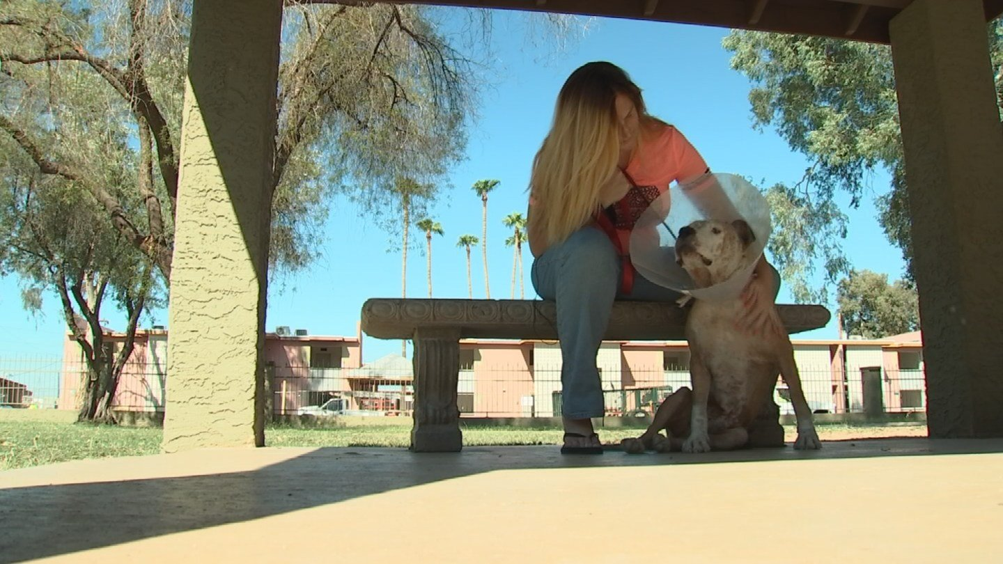 Carter says she owes her dog's life to Everett. (Source: CBS 5 News)