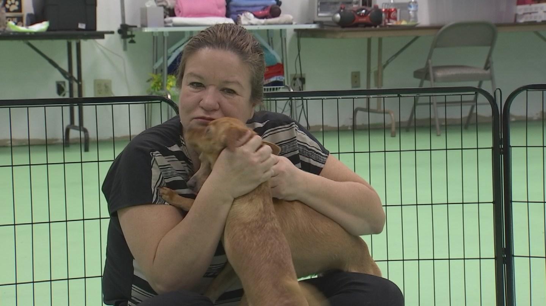 Christina Alfaro loves the animals she rescues. (Source: CBS 5)