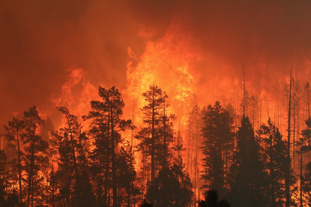 Will It Be Another Active Wildfire Season Arizona S Family