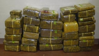 Federal officers find 573 pounds of pot hidden in a pop-up trailer.