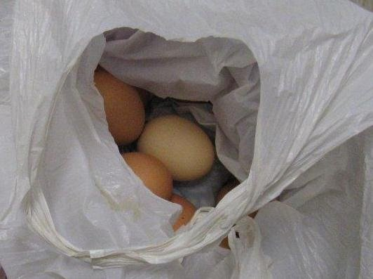 12 duck eggs seized and destroyed at the border