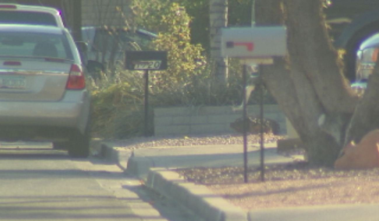 Police say unsecured mailboxes should not be used for valuable mail.