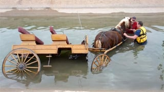 It's not clear yet how the horse, buggy and rider ended up in the canal. (Source: Mesa Fire Department)