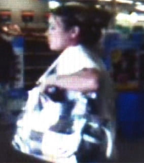 Surveillance image of a woman also sought in connection with the thefts.