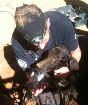 Sam was freed and glad to be back in someone's arms again. (Source: Arizona Human Society)