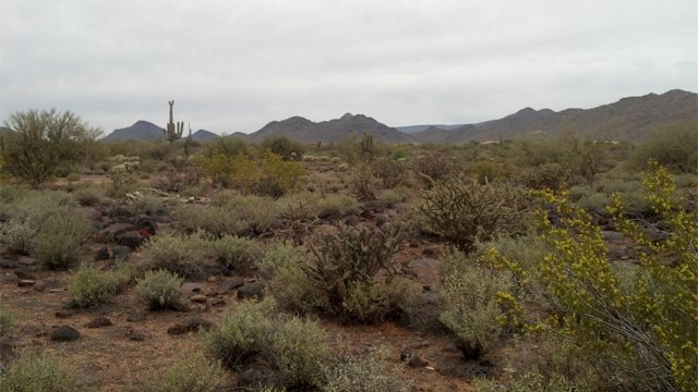 Cave Creek east (Source: City of Phoenix)