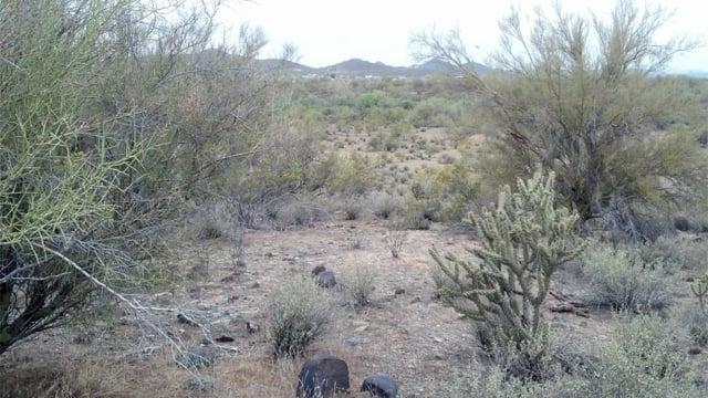 Apache west  (Source: City of Phoenix)