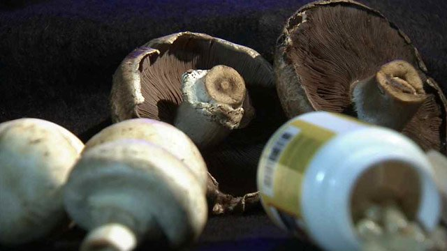 Water is extracted from the mushroom and they are ground down and put in a capsule. Hausman said each capsule is the equivalent of eight cups of mushrooms. (Source: CBS 5 News)