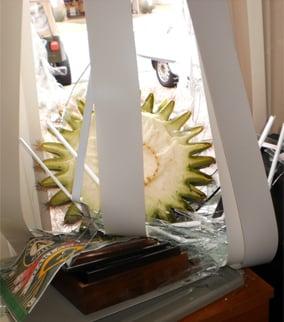 It busted right through the window. (Source: Jadiann Thompson, cbs5az.com)