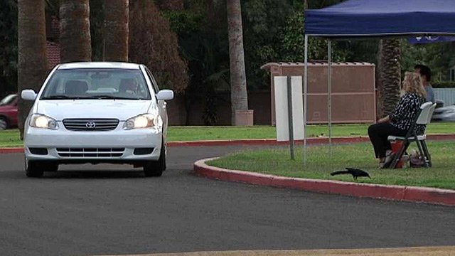 An inquisitive motorist stops in front of volunteer Vikki Hernandez. (Source: CBS 5 News)