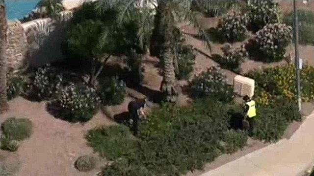 Chandler police officers search for clues after a body is found in these bushes near a gated Chandler community Monday morning. (Source: CBS 5 News)