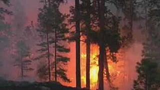 2011 Wallow Fire (Source: CBS 5 News)
