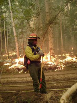 2011 Wallow Fire (Source: U.S. Forest Service)