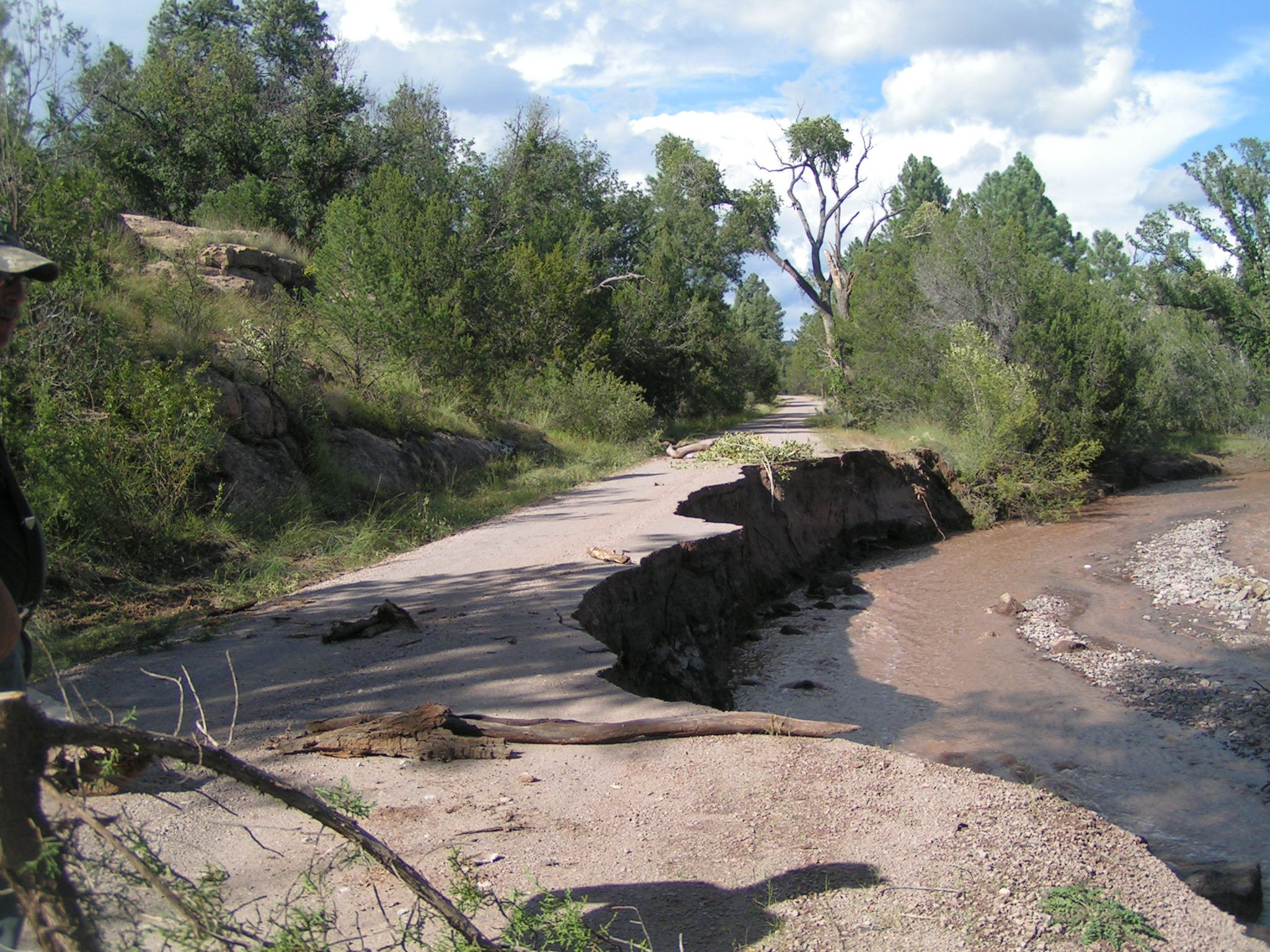 (Source: Gila National Forest)