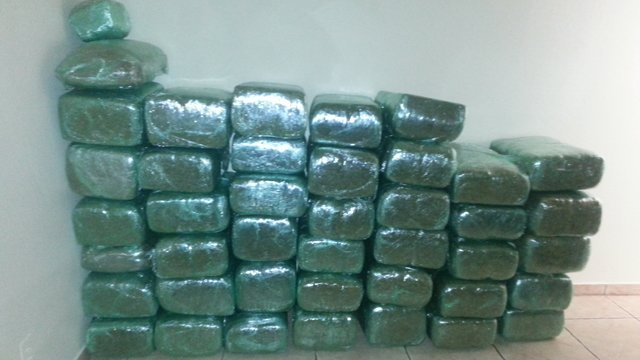 1,000 pounds of marijuana seized. (Source: Phoenix Police Department)