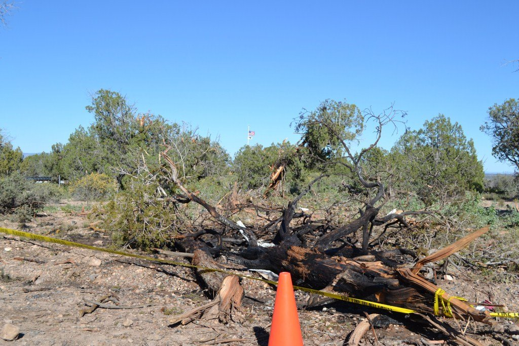 Area where the aircraft hit the trees (Source: Yavapai County Sheriff's Office)