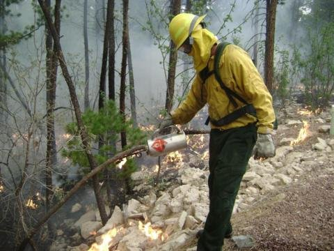Wallow Fire
