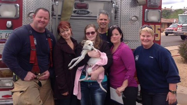 Phoenix firefighters and thankful homeowners pose with a dog rescued from a burning home. (Source: Phoenix Fire Department)