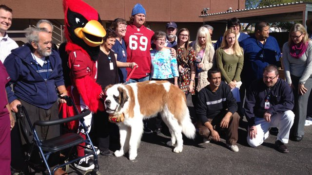 The Arizona Cardinals at Circle the City in Phoenix Tuesday afternoon. (Source: CBS 5 News)