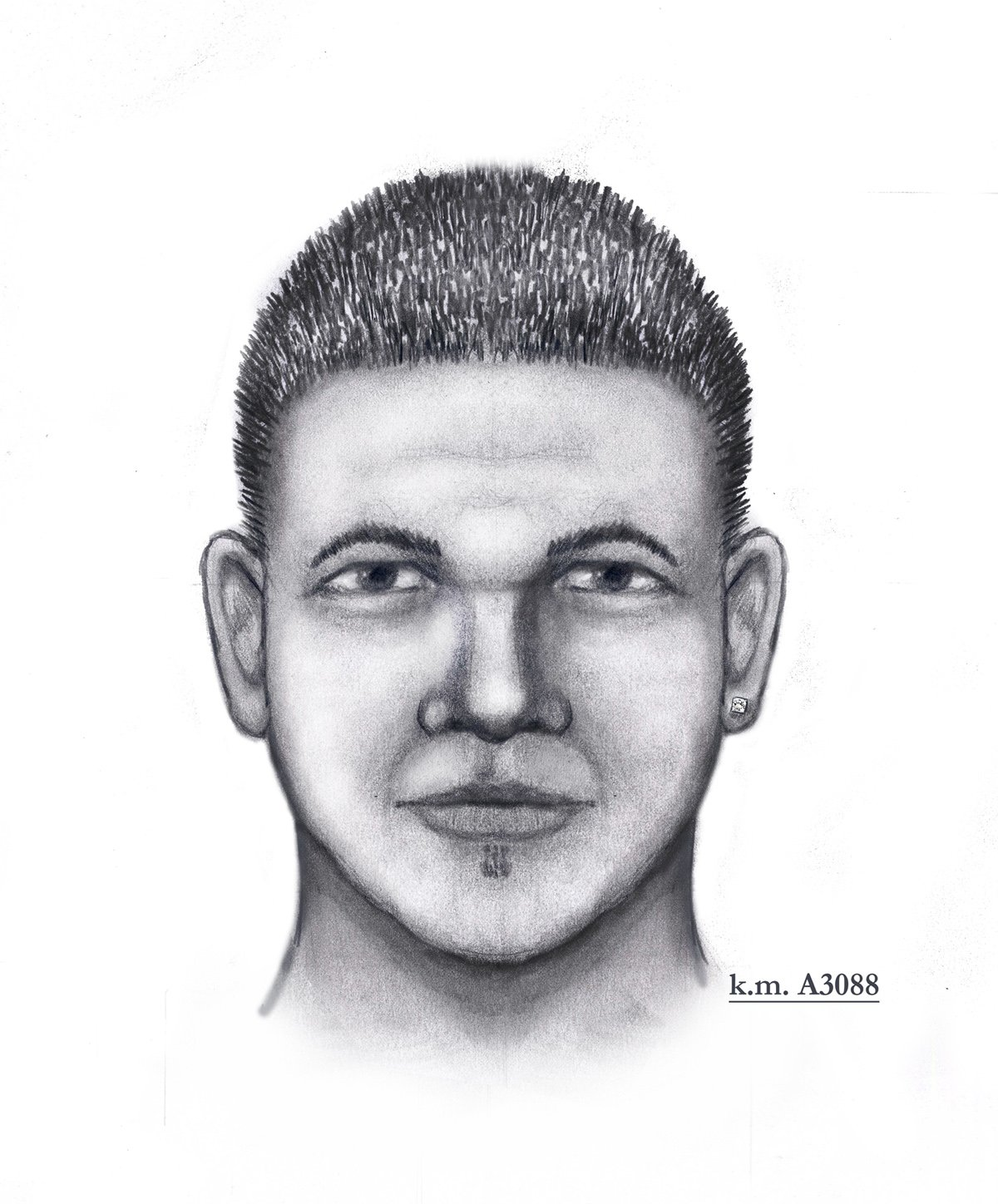 Victim's description of the suspect in the attempted kidnapping in the 1800 block of N. 38th Avenue on Feb. 6