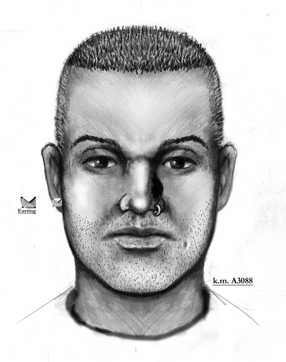 Description in the attempted kidnapping near 28th Avenue and Granada Road.