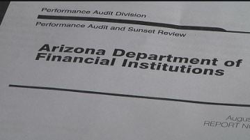 2013 Audit of DFI