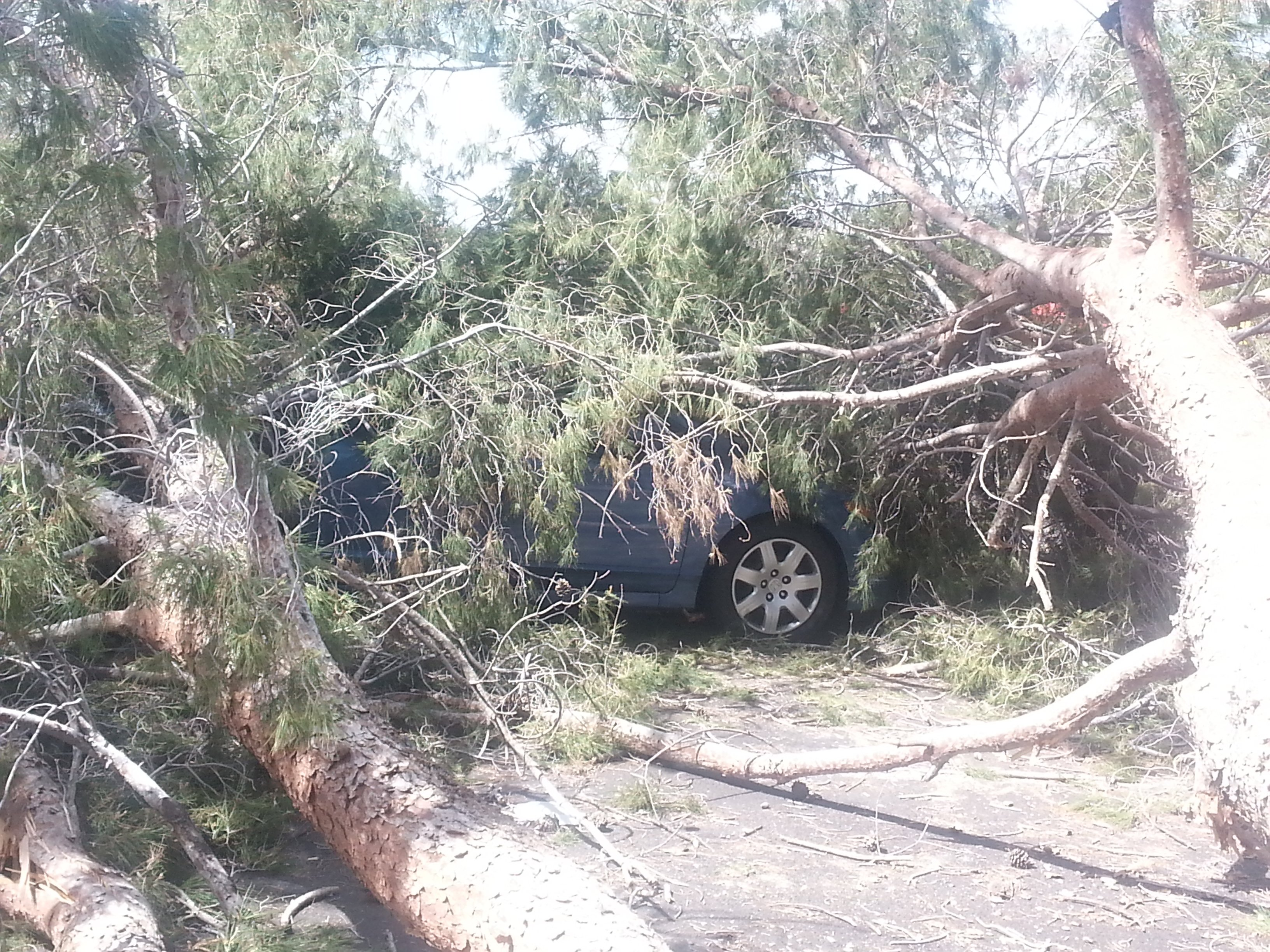(Source: Shawn Kline, cbs5az.com)