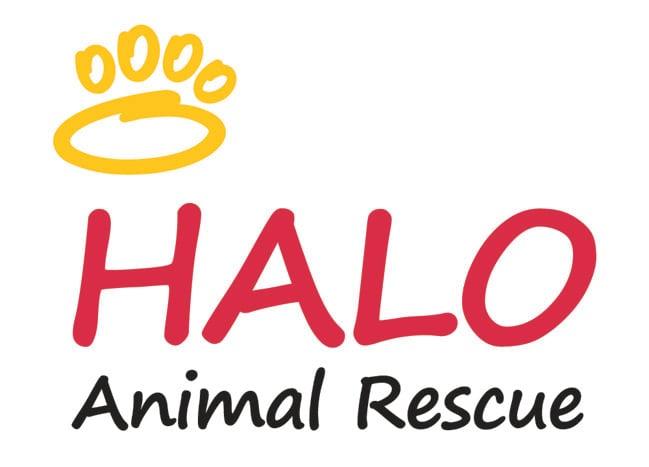 (Source: HALO Animal Rescue)