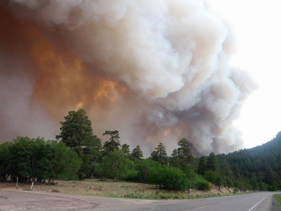 A viewer sent these photos of the Assayii Lake Fire.