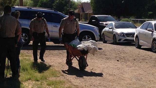 MCSO Deputies carry a wheelbarrow of dead dogs outside the Hughes home. (Source: CBS 5 News)