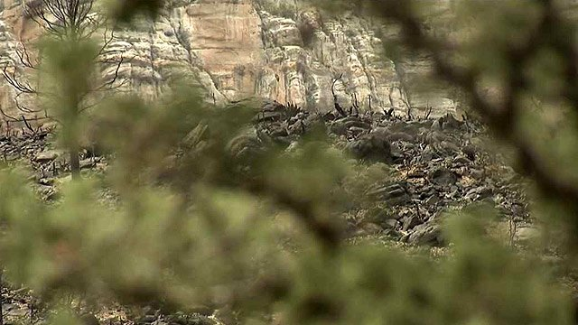 The Slide Fire started May 20 and was fully contained at the beginning of July, but damaged more than 20,000 acres. (Source: CBS 5 News)