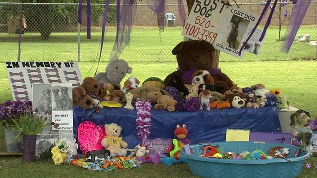 A memorial growing next door to Green Acre Cage Free Dog Boarding in Gilbert, where more than 20 dogs were found dead in June, has created tension between mourners and the owner. (Source: CBS 5 News)
