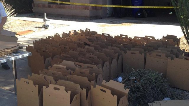 65 cats found in hoarding situation at Gilbert home.