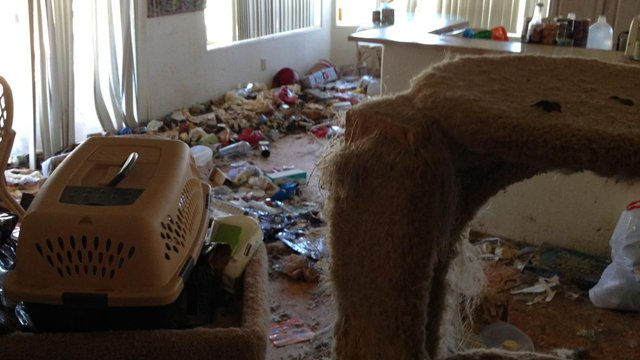 MCSO received two anonymous tips about possible animal hoarding at the home.  (Source: Maricopa County Sheriff's Office)