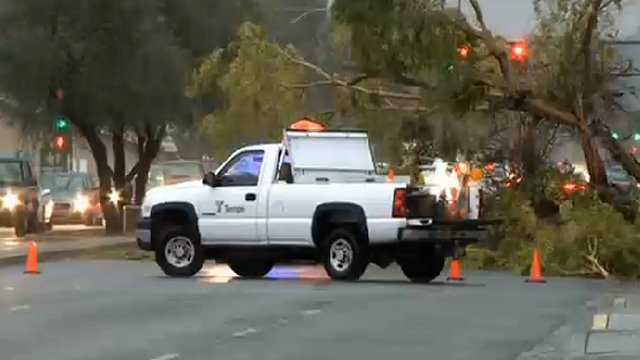 The storm uprooted trees and downed power lines. (Source: CBS 5 News)
