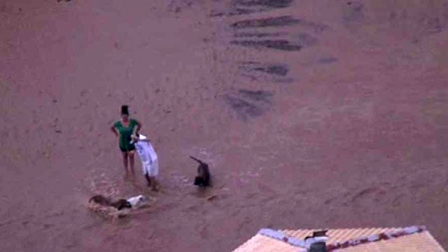 Dogs in Laveen were enjoying the wet weather. (Source: CBS 5 News)