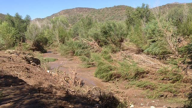 Black Canyon Creek was nothing like this on Tuesday when it overflowed its banks. (Source: CBS 5 News)