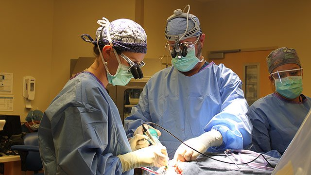 Dr. David Adelson, right, performs brain surgery on tiny Hayden Poeling to help stop her seizures. (Source: Phoenix Children's Hospital)