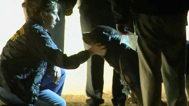 A sheriff's deputy gives this dog some love. (Source: CBS 5 News)