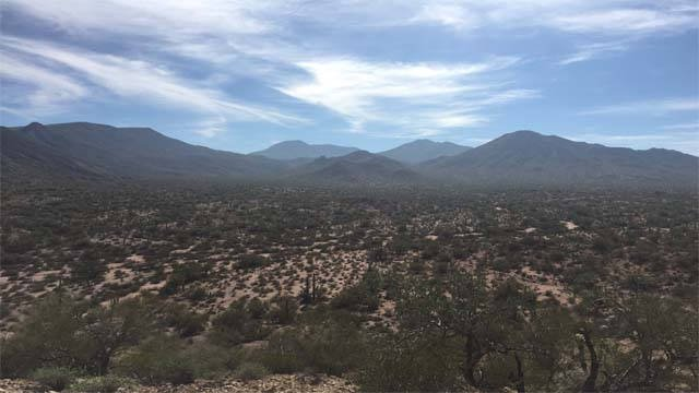 Mexican drug cartel scouts are camped out in mountains south of Phoenix.  (Source: Morgan Loew/KPHO)