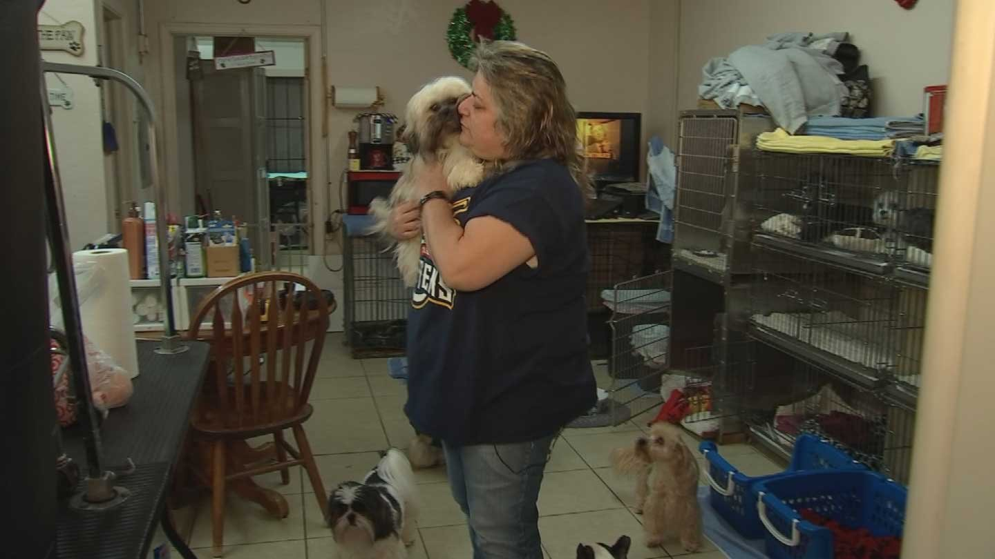 Julie Plumber provides a temporary home for dogs that people left behind. (Source: KPHO/KTVK)